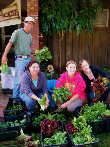 "Interns and volunteers at The Abundant Table farm in Oxnard gather produce for ""shares"" to be provided to local subscribers through its ""Join the Farm"" program. The Abundant Table is a ministry of the Episcopal chaplaincy at California State University at Channel Islands. Photo: The Abundant Table"