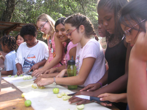 Youngsters at Camp Stevens in Julian, California, cut up freshly harvested produce to prepare it for canning or drying. Planting, tending, harvesting and preserving food in the organic gardens has become a favorite activity among campers of all ages. Photo: Camp Stevens staff
