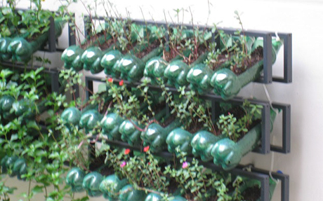 Racked recycled plastic bottles serve as planters. Photo: Anglican Communion News Service