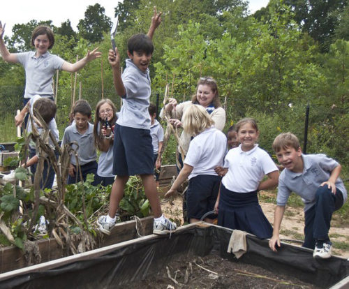 Environmental Stewardship Fellow Cindy Coe works in the garden with students of the Episcopal School of Knoxville. Photo courtesy of Episcopal School of Knoxville