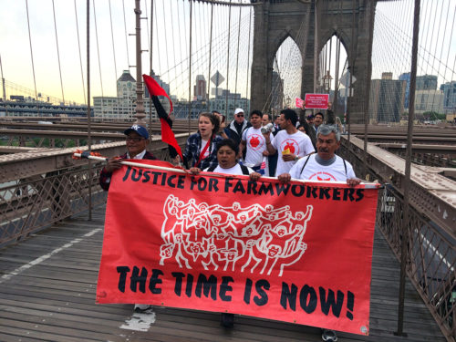 1.Marchers carried banners, flags, and noisemakers as they chanted and crossed the Brooklyn Bridge into Manhattan on Day 7 of the 18-day Farmworkers March for Justice event, spearheaded by the Rural & Migrant Ministry among other organizations. Photo: Amy Sowder