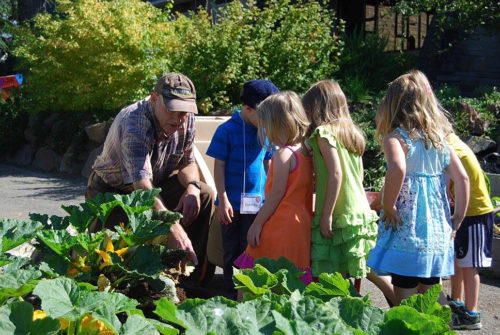 J.B. Hoover, a St. Andrew's Episcopal Church member and garden volunteer, shows some vacation Bible school participants how the squash is doing. Photo: St. Andrew's Episcopal Church via Facebook