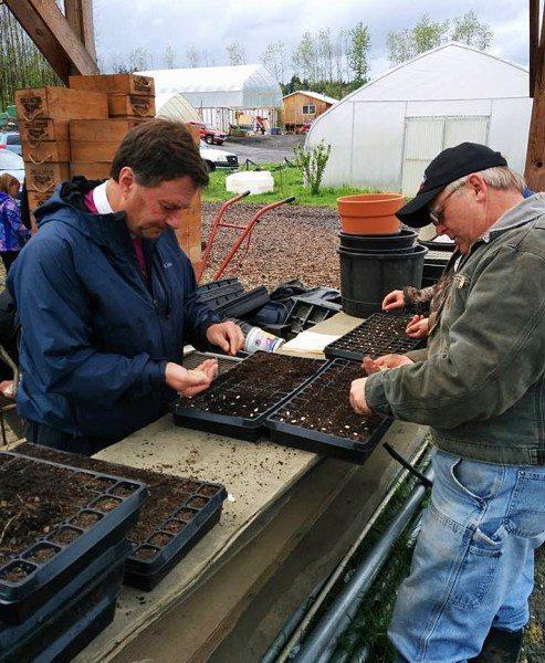 El Rvdmo. Greg Rickel, obispo de la Diócesis de Olympia, a la izquierda, y Eric Fritch, propietario de las Granjas Chinook, plantan retoños de calabacines. Foto de la iglesia episcopal de la Santa Cruz.