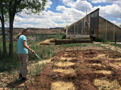 Los arriates reticulares se cuentan entre algunas de las técnicas para ahorrar agua que la misión El Buen Pastor, en Fort Defiance, Arizona, está usando mientras desarrolla su ministerio agrícola con la ayuda de una subvención de la UTO. Foto de la misión El Buen Pastor.