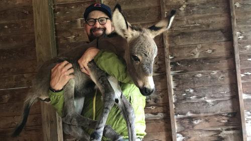 Joseph Rose holds donkey newborn
