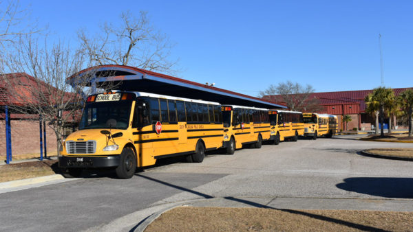 W.A. Perry school buses