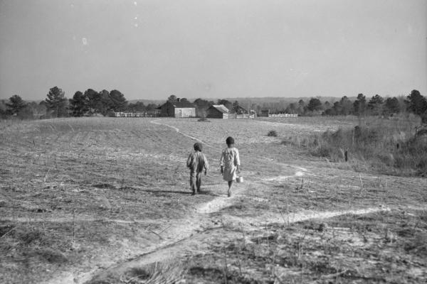 Pettway Plantation